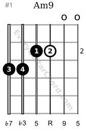 Am9 guitar chord 2nd position