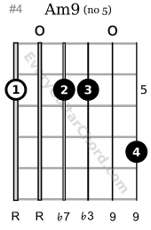 Am9 guitar chord 5th position variation